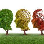 Os 5 Melhores Suplementos para Proteger Seu Cérebro de Envelhecimento (Parte 1)