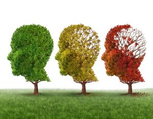 Proteja Seu Cérebro de Envelhecimento