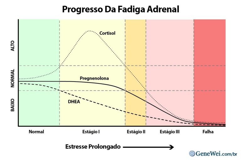 Imagem de um gráfico que mostra as mudanças na produção de cortisol, dhea e pregnenolona em diferentes estágios de fadiga adrenal, devido ao estresse prolongado. GeneWei.com