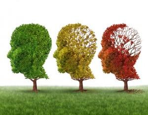 护大脑不受老化的营养品(第1部分)