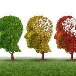護大腦不受老化的營養品(第1部分)